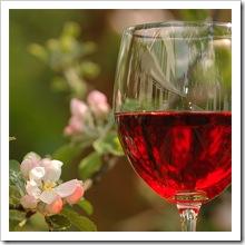 Dieta dlja ljubitelej vina